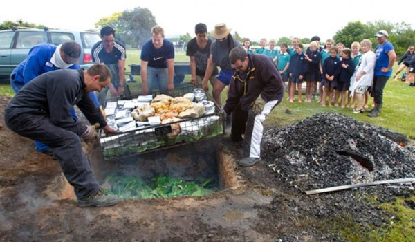 Men lowering food into a hangi as embers cool on a sheet of corrugated iron